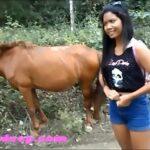 Cavalo metendo com força