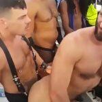 Festa gays